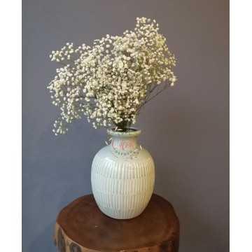 Şoklanmış Beyaz Cipso - Kuru Çiçek - CPS00