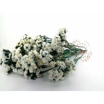 Şoklanmış Beyaz Statis (Yeşil Dallı) - Kuru Çiçek - STS02