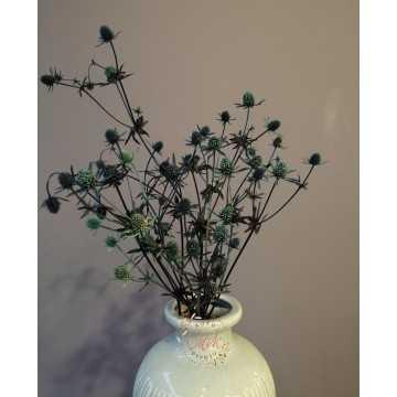 Boğa Dikeni Demeti - Eryngium (Yeşil)