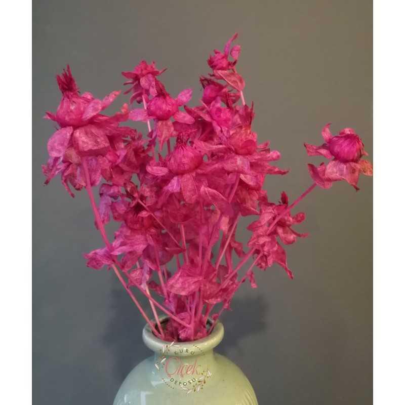Aspir Çiçeği 20 Kafa (Pembe)
