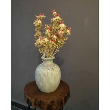 Aspir Çiçeği 20 Kafa (Krem) - 20201000854
