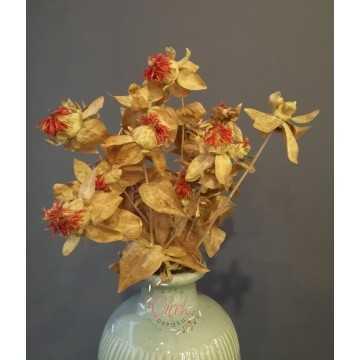 Aspir Çiçeği 20 Kafa (Natural)