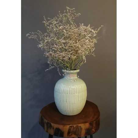 Deniz Otu - Tatarika Kuru Çiçek (Beyaz)