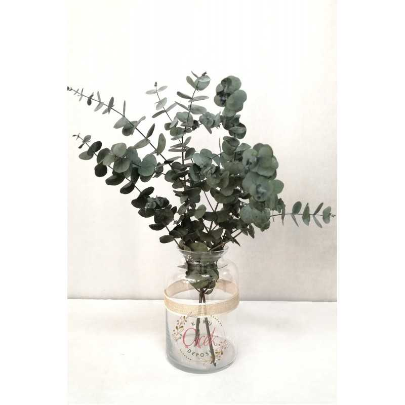 Okaliptus Demeti - Şoklanmış Küçük Okaliptus Kuru Çiçek (Mavi) - 20420201265