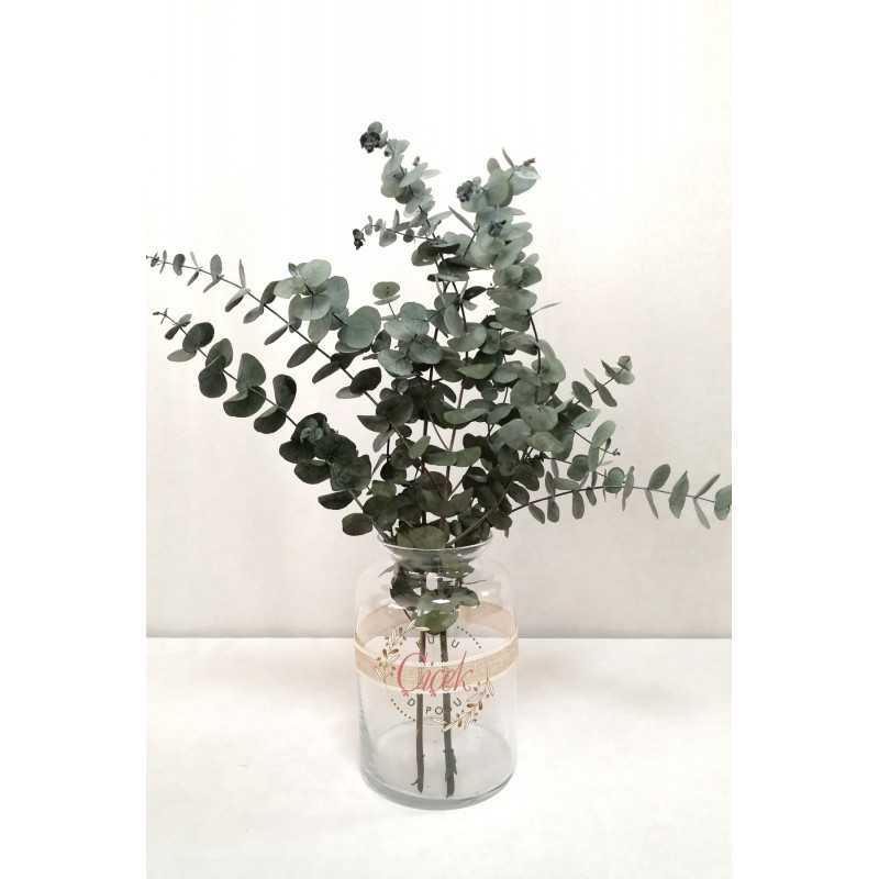 Okaliptus Demeti - Şoklanmış Küçük Okaliptus Kuru Çiçek (Yeşil) - 20420201264